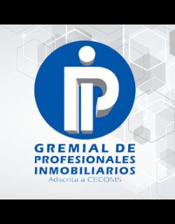 GPI Gremial de Profesionales Inmobiliarios